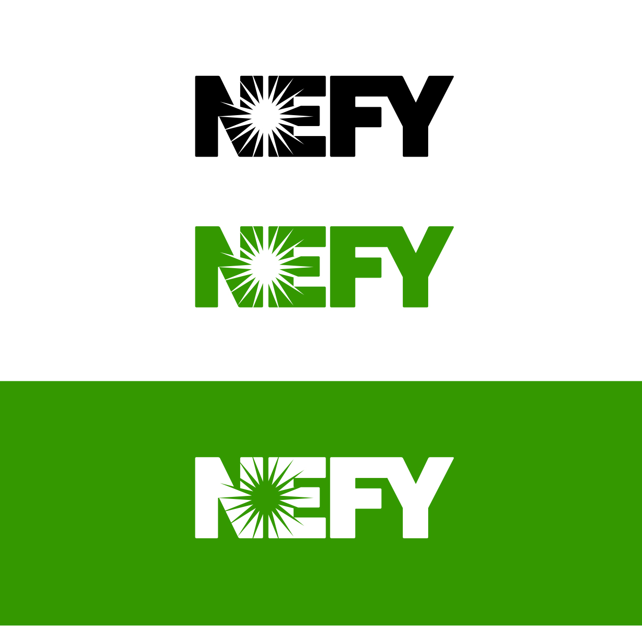 nefy-nutrition-logo-design1